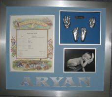 Aryan Singh Brar